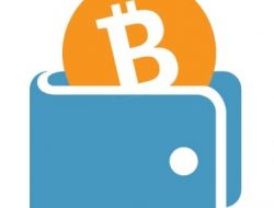 How To Store BitCoin Safely – Different Types of BitCoin Wallets