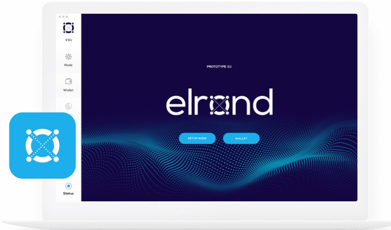 elrond network ICO Review