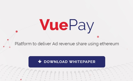Vuepay Review