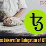Best Tezos Bakers XTZ baking