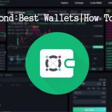 What is Elrond Network - Best Elrond Wallets - Best ERD Wallet - How to buy