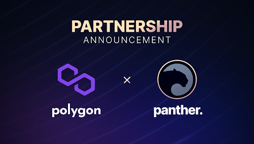 Panther and Polygon are Taking Privacy to New Heights in DeFi 1