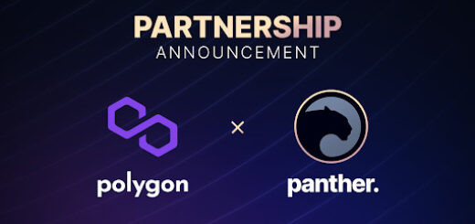 Panther and Polygon are Taking Privacy to New Heights in DeFi 3