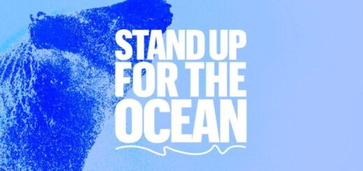 The SOS Foundation To Partner with Project Zero to Restore the Ocean. 9