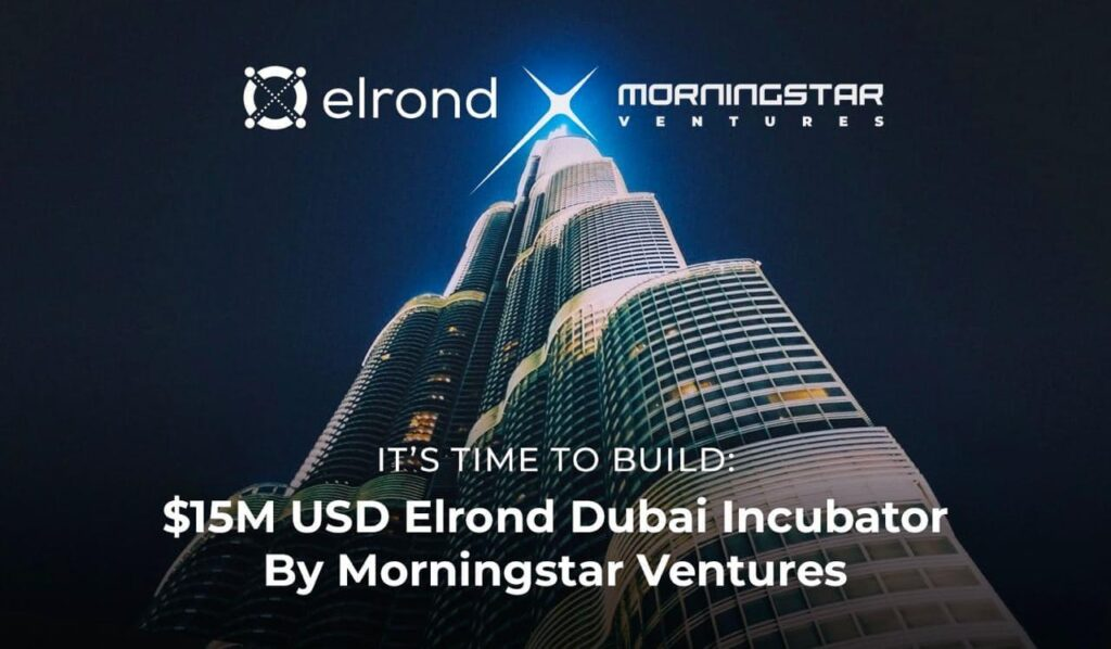 Morningstar Ventures Commits $15 Million USD To Invest In Projects Building On Elrond Network And Opens An Elrond Incubator in Dubai 1