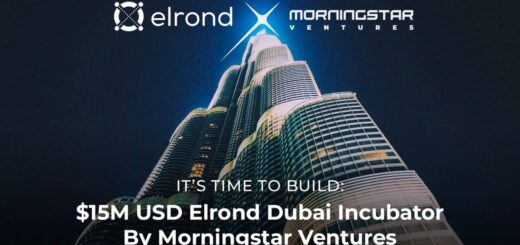 Morningstar Ventures Commits $15 Million USD To Invest In Projects Building On Elrond Network And Opens An Elrond Incubator in Dubai 11