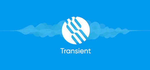 Transient Raises $1.2 Million in IDO Public Sale to Build the Amazon of Smart Contracts 1